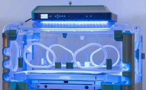 Lampe za fototerapiju beba